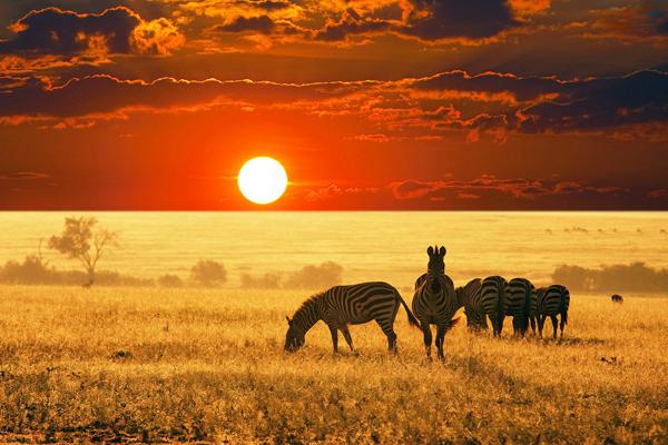 dk destinationer sydafrika spoergsmaal om sydafrika vejret i sydafrika
