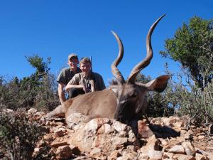 non-trophy kudu
