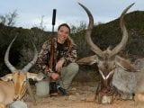 Non-trophy kudu & impala