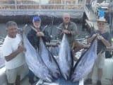Tunfisk